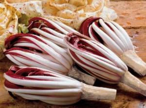 radicchio treviso - ricetta risotto salsiccia