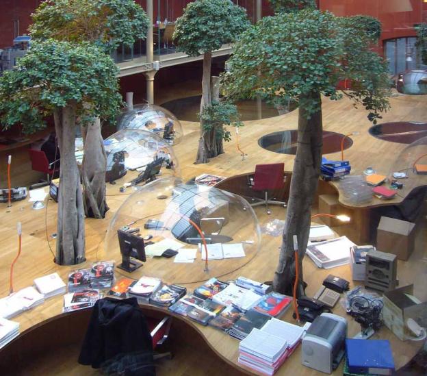 ufficio ficus