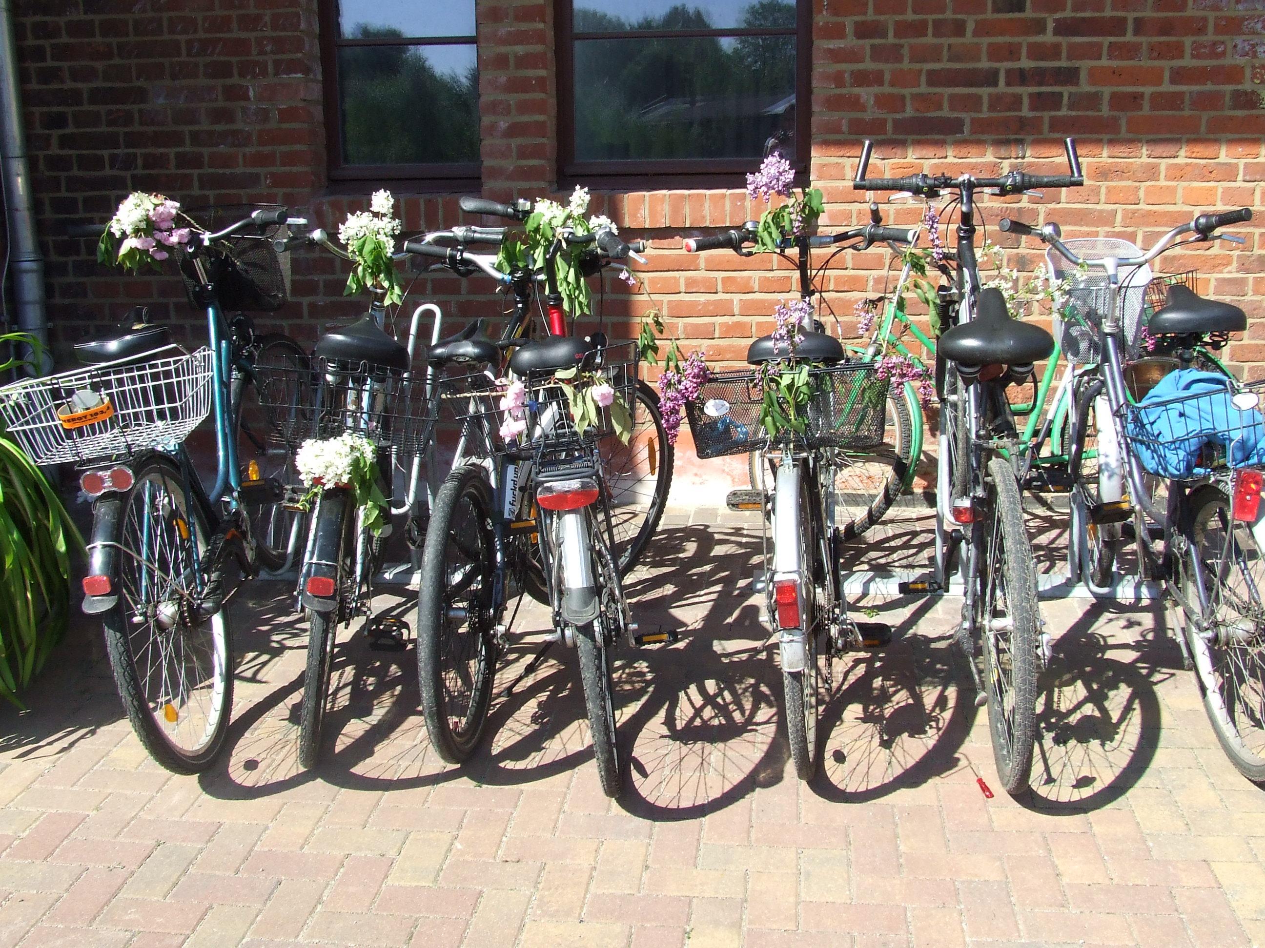 ogni_occasione_è_buona_biciclette