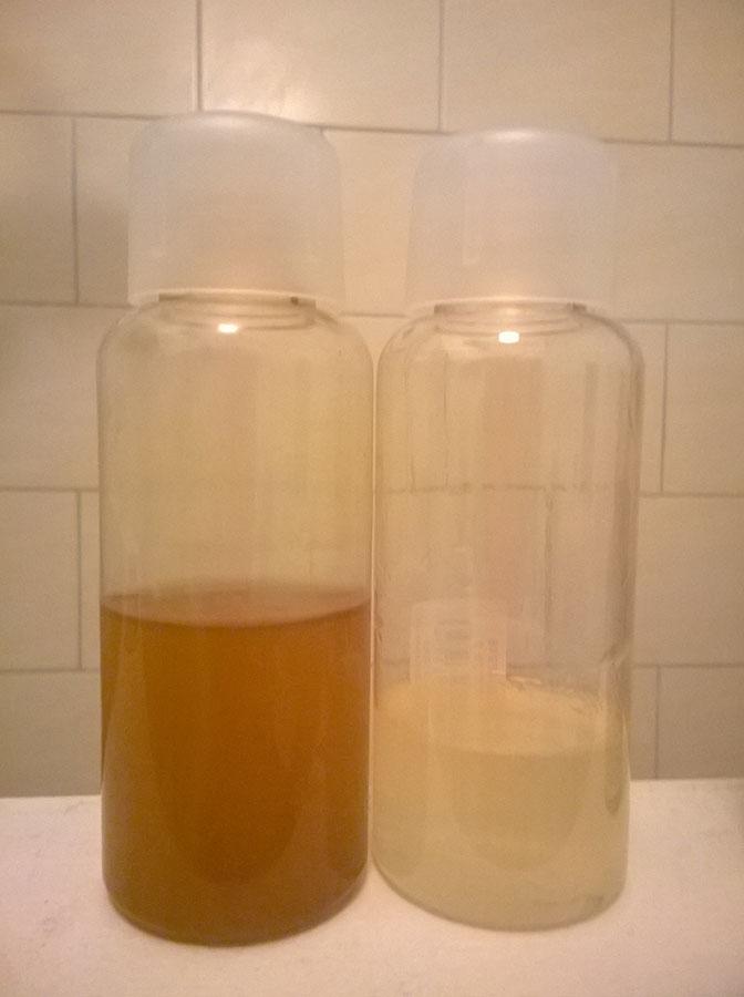 Shampoo+Balsamo