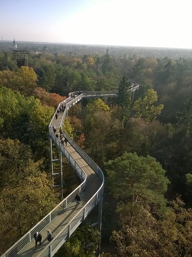 Baumkronenpfad_bridge