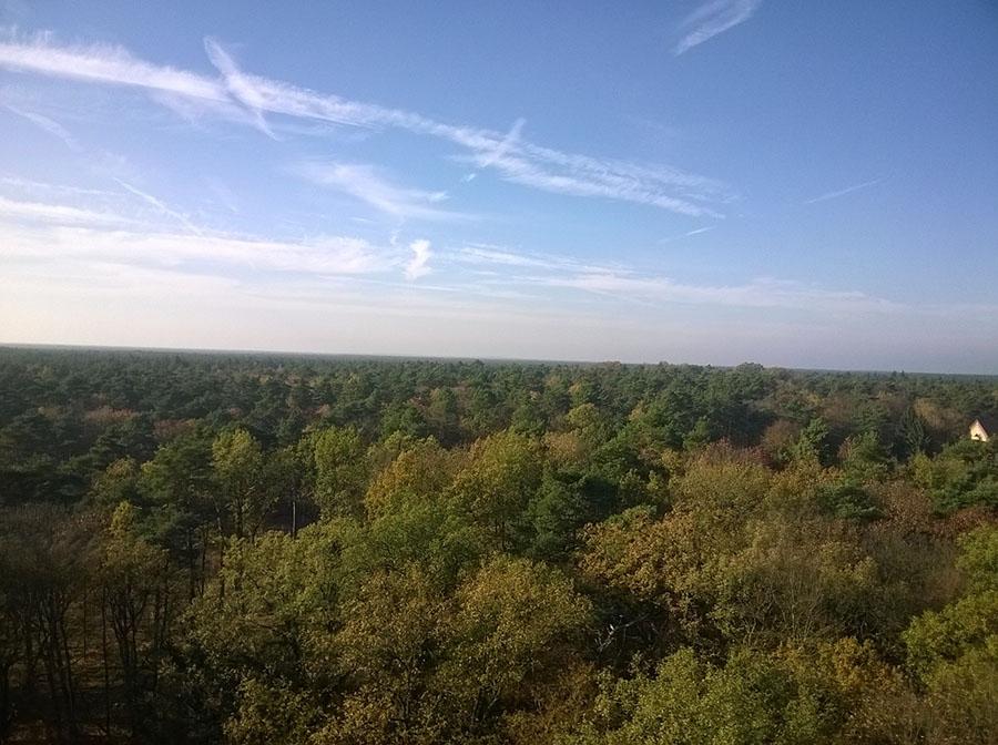 Baumkronenpfad_view